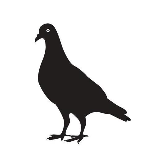 Pigeon Row's avatar