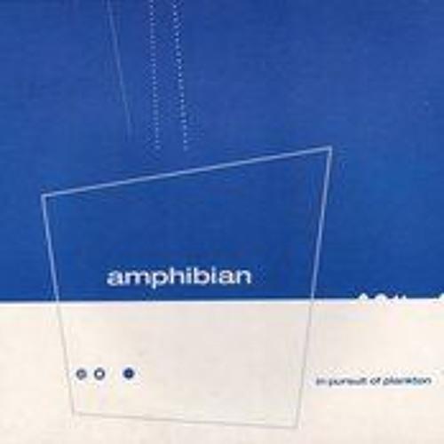 amphibian's avatar