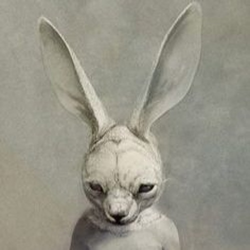 Samuel Knuckle Rocket's avatar