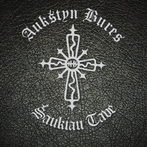 Aukštyn Bures's avatar