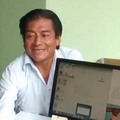 Luis Ernesto Jami