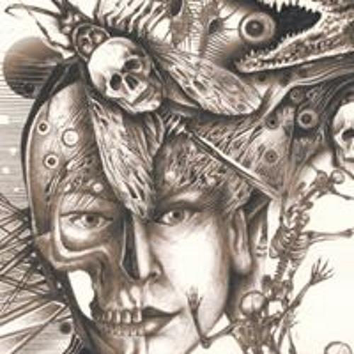 Roman Hitka's avatar