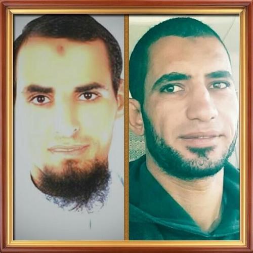 Abdeltowab Topa's avatar