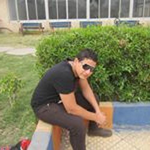 Mohamed Elsharawy's avatar