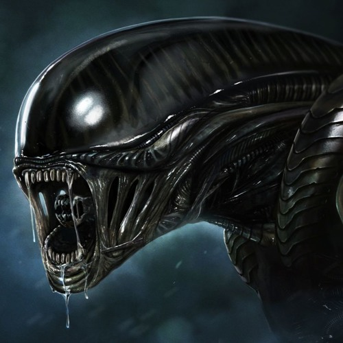 mr. noir's avatar