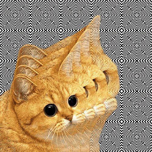 cor.nelius's avatar