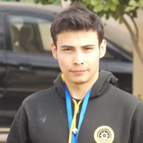 Shahid Afandi's avatar