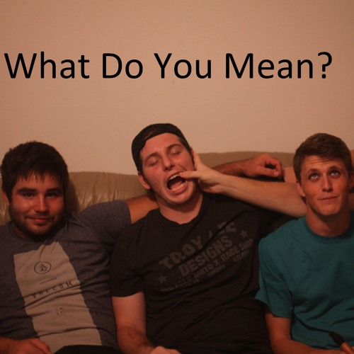 What Do You Mean?'s avatar