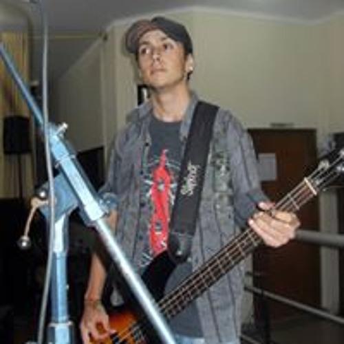 Pedro Ribeiro's avatar
