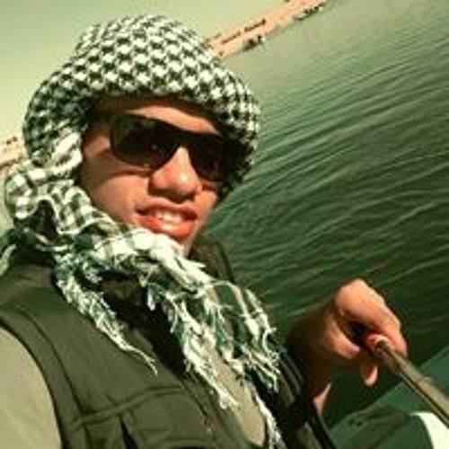 Osama M Donia's avatar