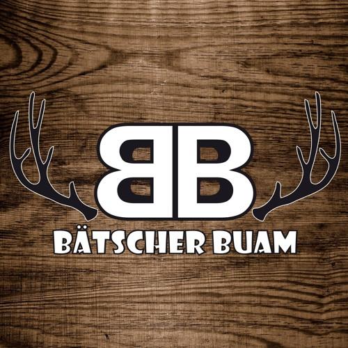 Bätscher Buam's avatar