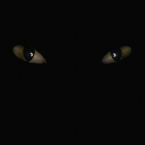 vivi craig's avatar