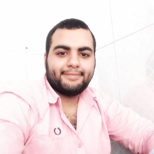 Mahmoud Alnahrawy's avatar