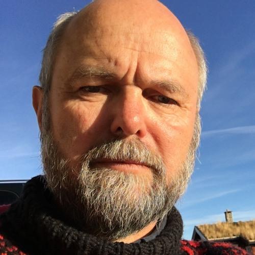 arnebhus's avatar