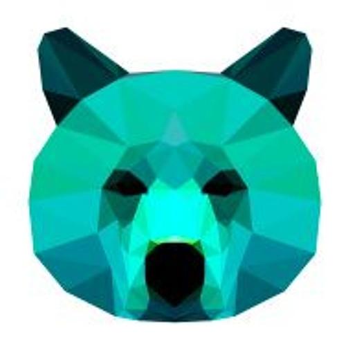 POLAR B's avatar