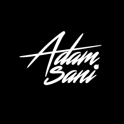 Adam Sani's avatar