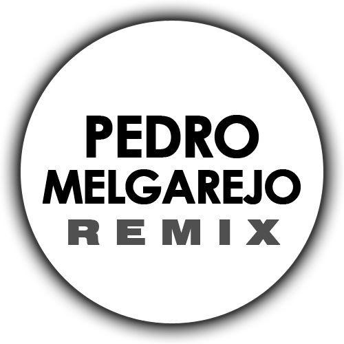 pedromelgarejo's avatar
