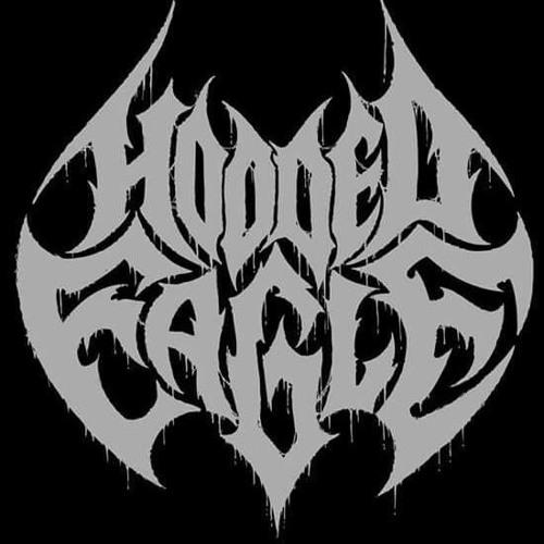 Hooded Eagle's avatar