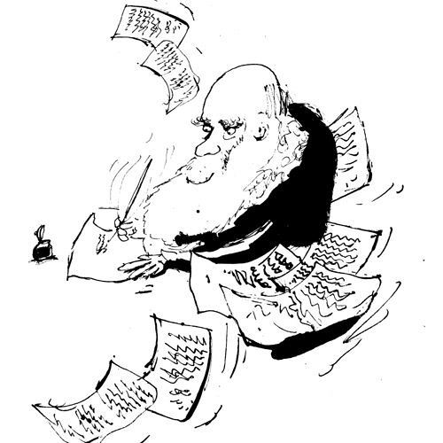 Darwin Correspondence's avatar
