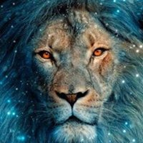 Leo Chacrita's avatar