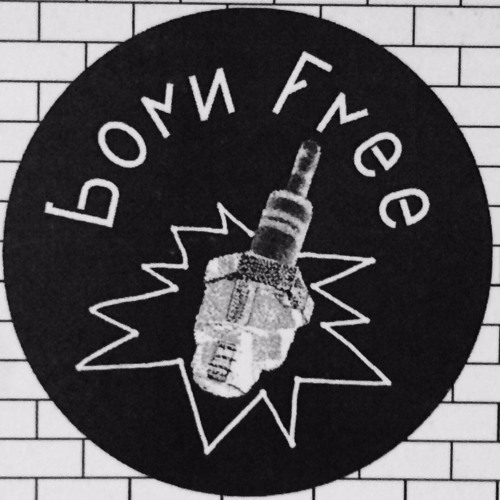 Born Free records's avatar