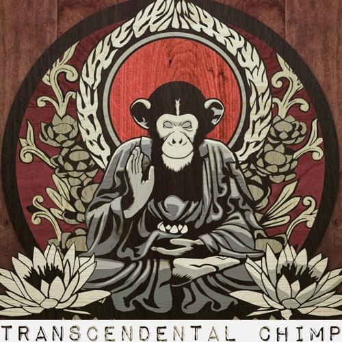 Transcendental Chimp's avatar