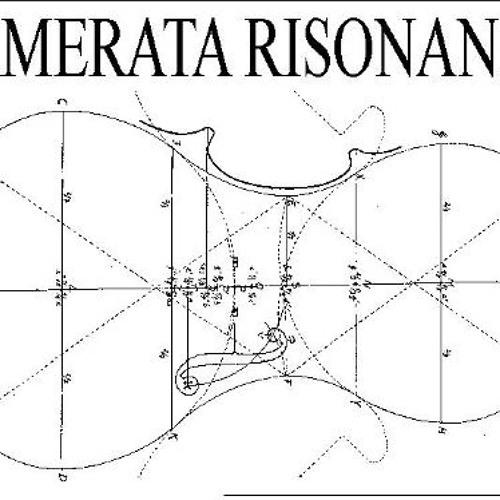 CAMERATA RISONANZA's avatar