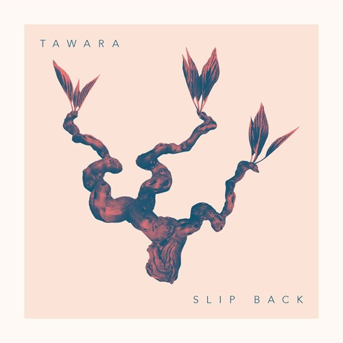Tawara Music's avatar