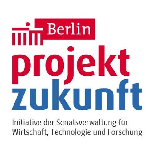 """Interview zu """"crowdfunding-berlin.com"""" auf FluxFM"""