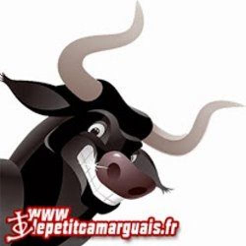 Le Petit Camarguais's avatar