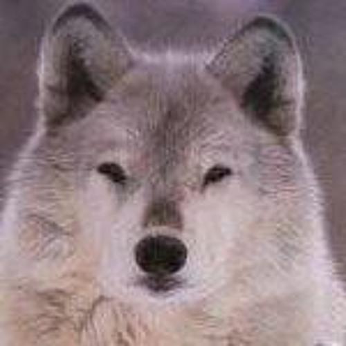 Luna Branwen's avatar