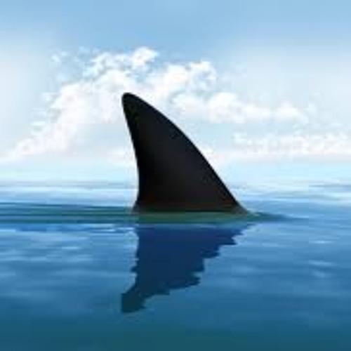Jaws1010's avatar