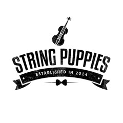 String Puppies