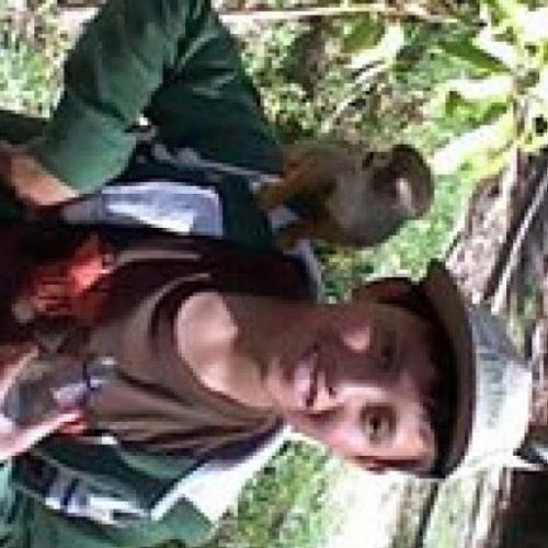 David Taboada's avatar