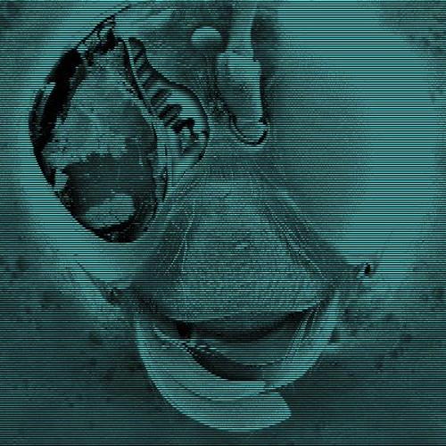 Fear Administration's avatar