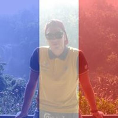 Thomas Ballarini's avatar