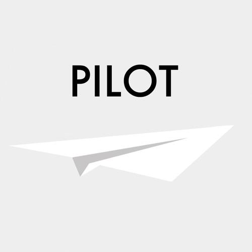 Pilot's avatar