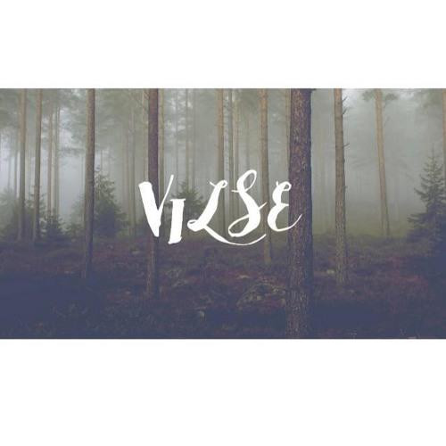 Vilse's avatar