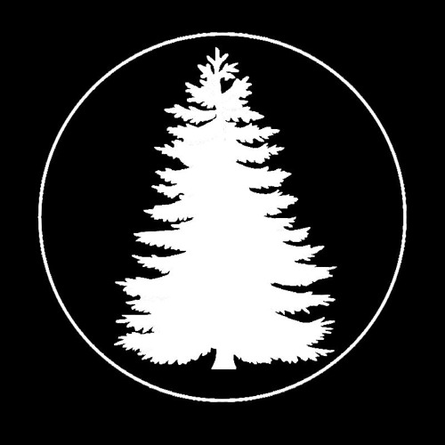 Cosmin Iv's avatar