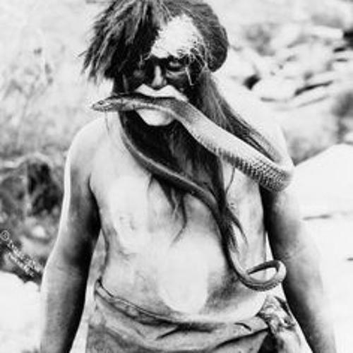 Niwa Native's avatar