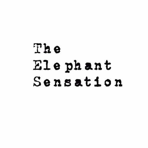 The Elephant Sensation's avatar