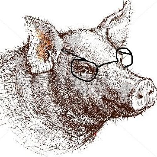 Igneous Pig's avatar