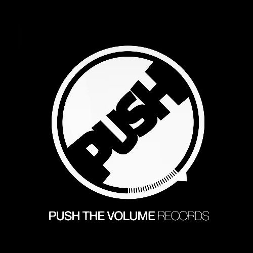 Push The Volume's avatar