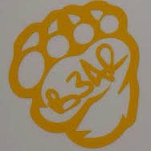 B3AR's avatar