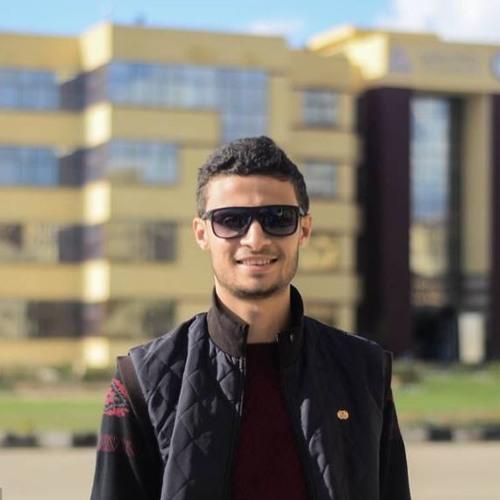 Abdelrhman Shalaby's avatar