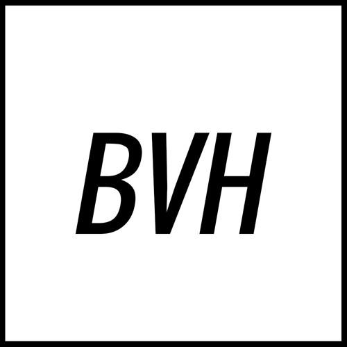 B V H's avatar