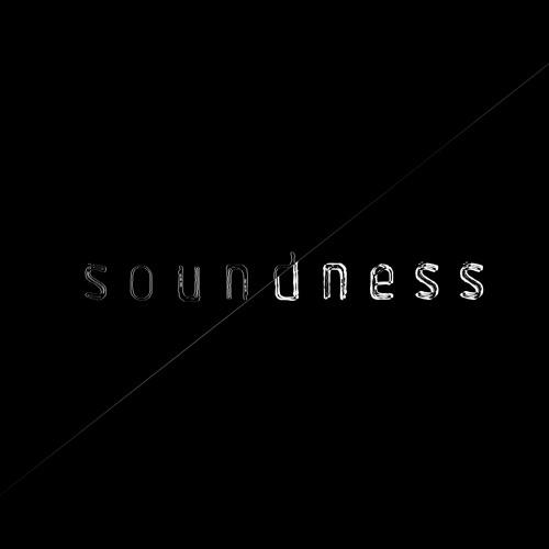 Soundness's avatar