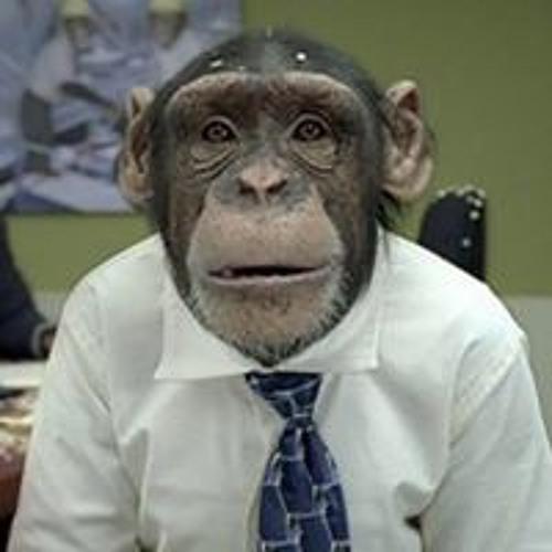 Michele Paba's avatar