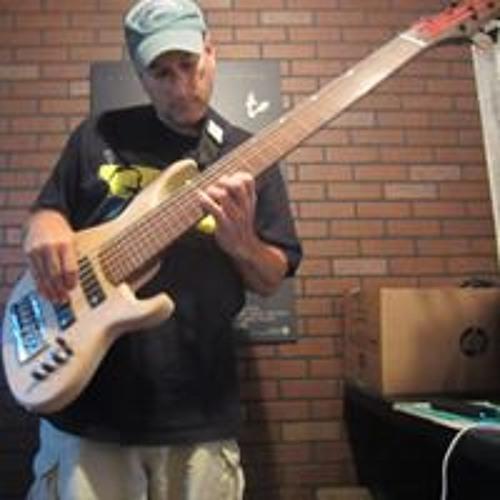 Steve Roy's avatar