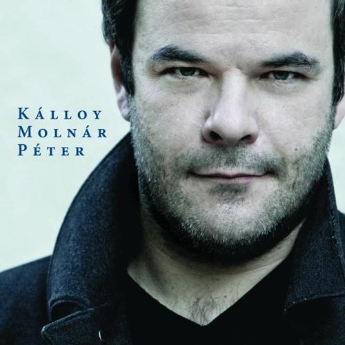 Kálloy Molnár Péter's avatar